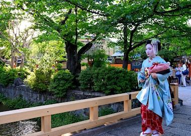 Kyoto. Hramovi, gejše, zen… Vrijedi svaki jen!